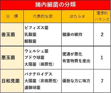 表:腸内細菌の分類
